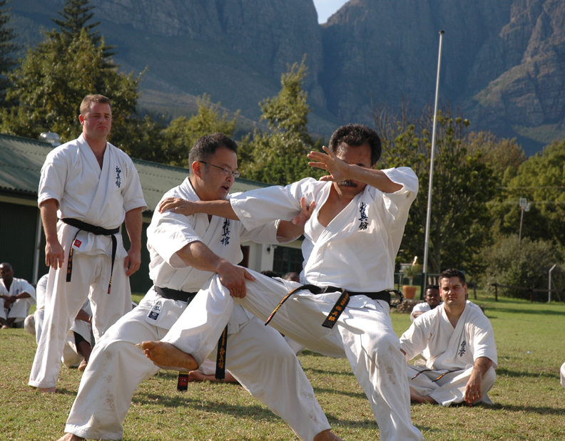 Bunkai: Kyokushin's Missing Link by Nathan Ligo