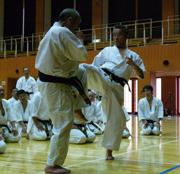 Kancho Royama's Central Message Re. International Instructor's Seminars in Japan