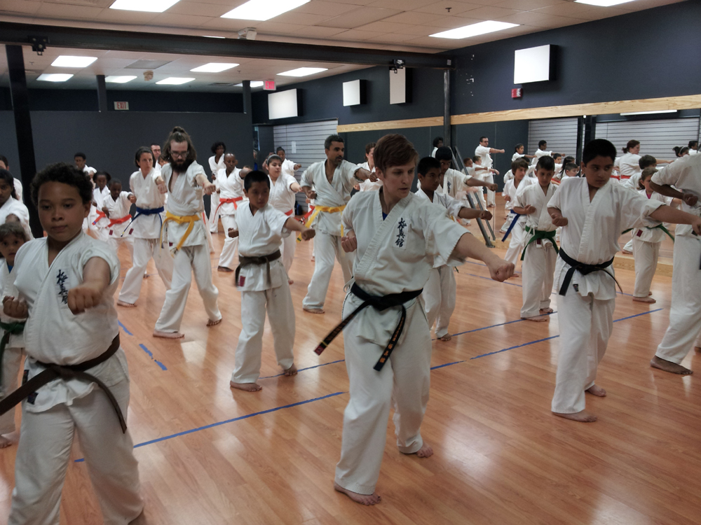 June 2013 Belt Test at Ligo Dojo