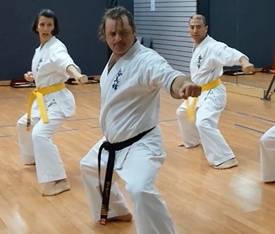 Technical Committee Lesson 7 Starting With Pinan Bunkai